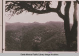 Upper Temescal Canyon in Pacific Palisades, Calif. with a large oak in the foreground and...